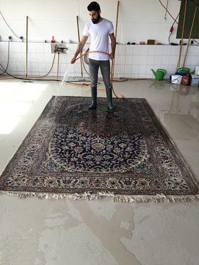 Schmutz vom Teppich befeuchten