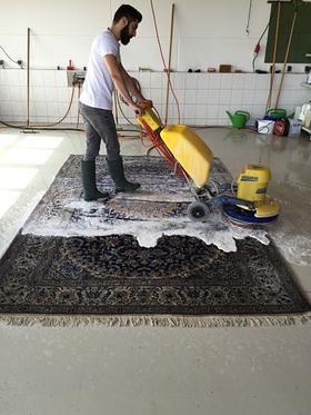 Teppich sauber pflegen